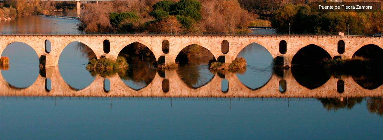 Puente de Piedra en Zamora - Visitas Guiadas Zamora